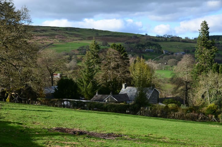 Country cottage. - Rhayader  - Cabin