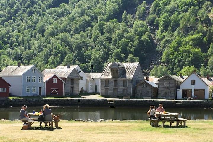 Gamle Lærdalsøyri leiligheter