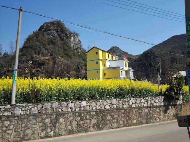 房前有金色的花海