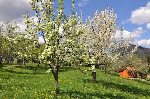 Farm stay Lesjak