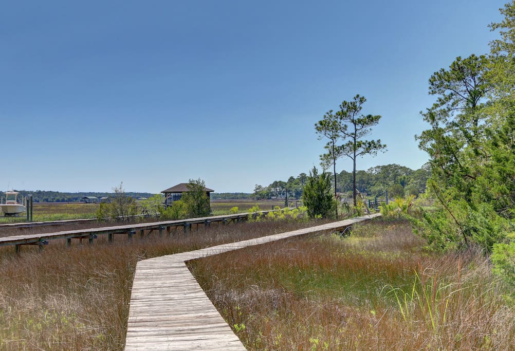 Walk way to dock over the marsh great place to see lots of good stuff