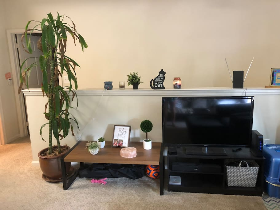 Living Room - TV and decor