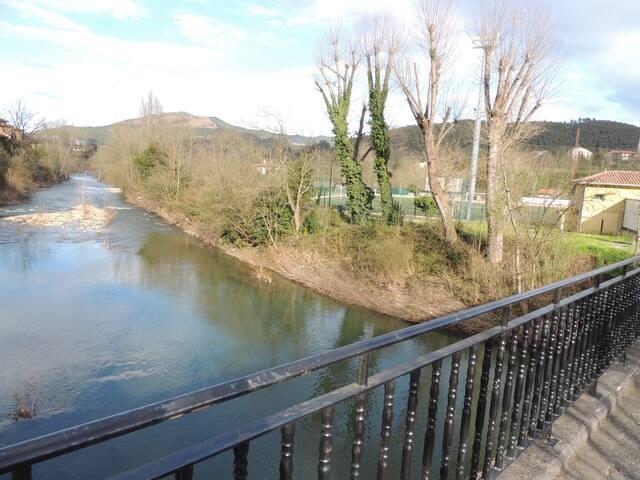 Rio Nervión