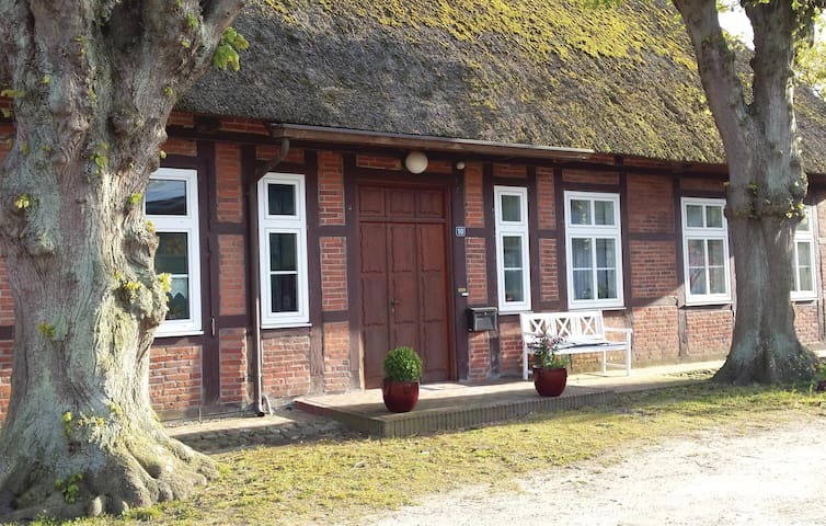 Semi-Detached with 3 bedrooms on 110 m² in Lutterbek