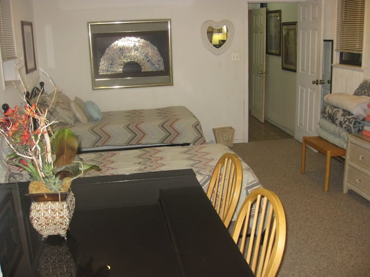 Lovely Bsmt Apt. Nr trn  to NYC - No Cleaning Fee
