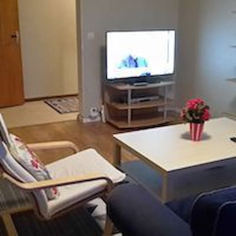 Private room near Volvo and 15 mins from City