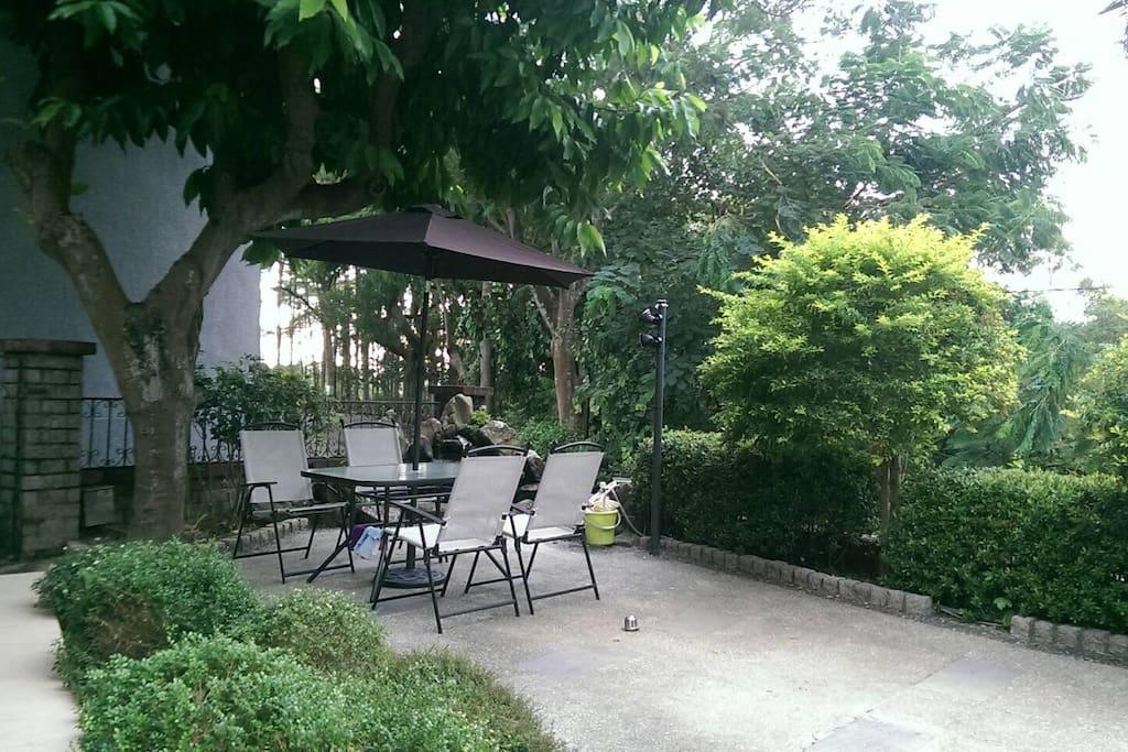 玉蘭花樹下,談天交心,悠閒的午後時光