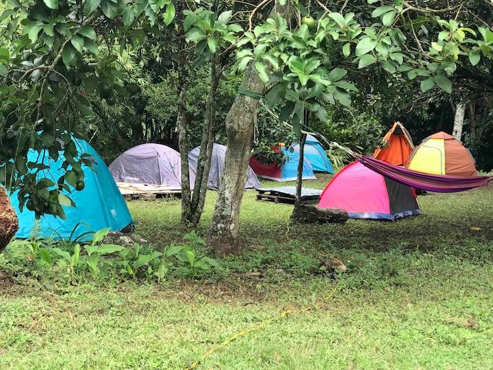 Carpa de acampar 🏕