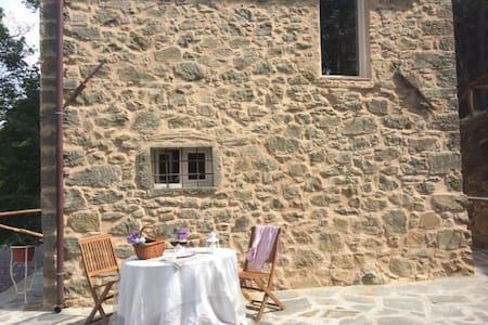 Tuscany Forest Chalet - Benabbio