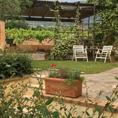 Casa con giardino con pergola - Orosei - Apartamento