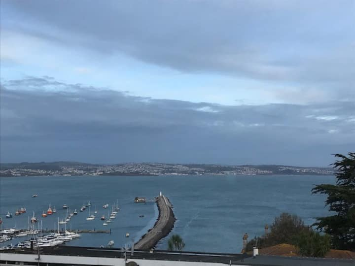 Breakwater View- Views of Torbay and easy parking!