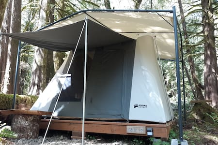 Sol duc rainforest glamping cabin tent 4