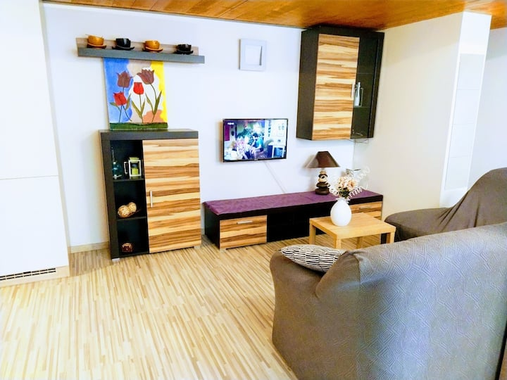 Apartment in center of Brno, nice and cozy place