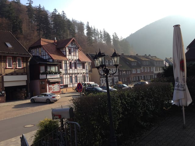 Lovely Apartment in South Harz, Balcony, Wifi - Zorge - Daire