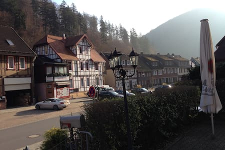 Lovely Apartment in South Harz, Balcony, Wifi - Zorge - Apartment