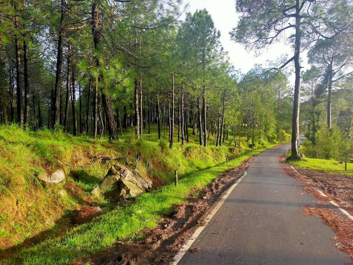 Hill top Village stay in Dharamshala