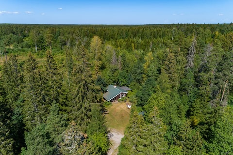 Private Cabin and Sauna in the woods near the lake
