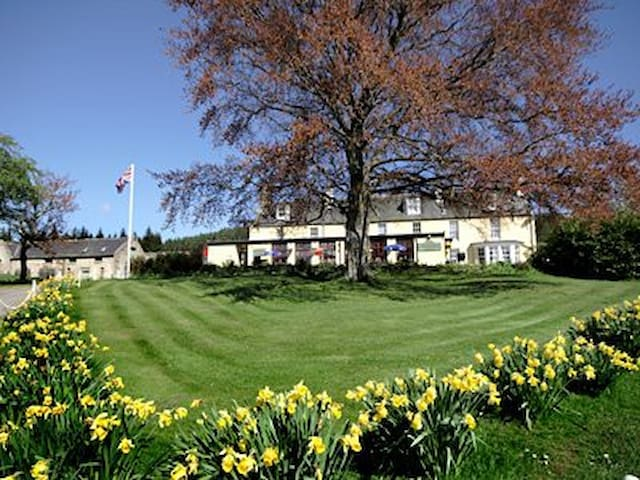 Colquhonnie room Double & Single Bed en-suite rm12 - Aberdeenshire - Bed & Breakfast