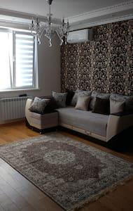 Transnistrian Luxury Apartment 6