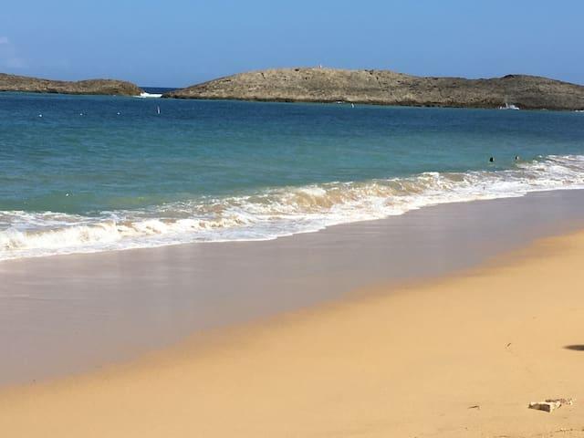 Loving 2 Bdr Beachfront Condo - Вега-Баха - Кондоминиум