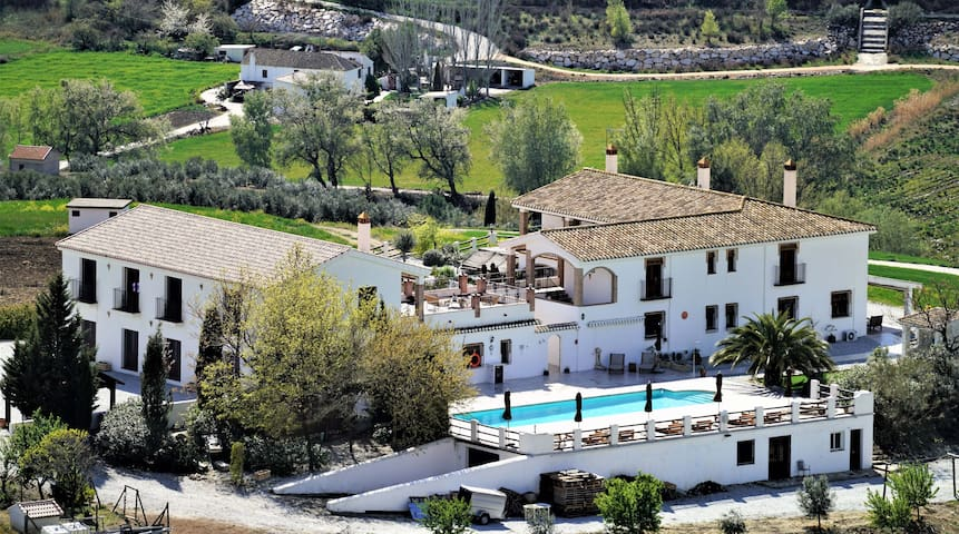 Exclusive use of fully staffed Luxury Villa