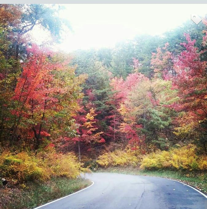 The fall colors are spectacular!