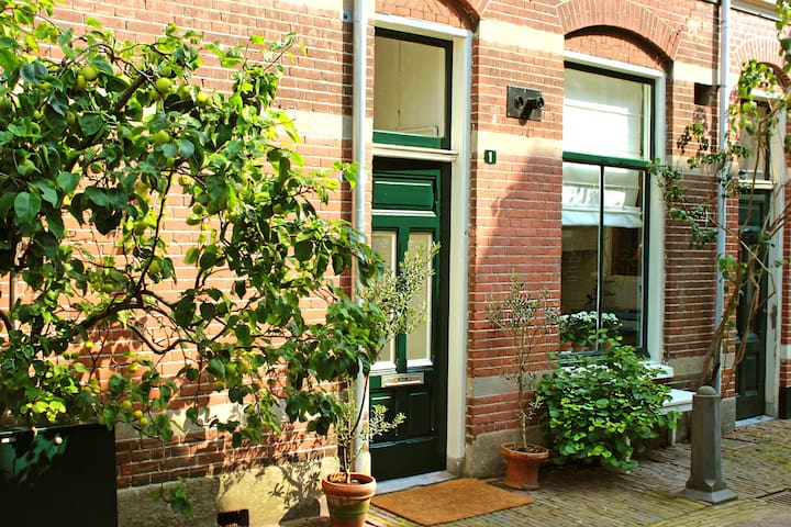 Charming Apartment Haarlem Center - Haarlem