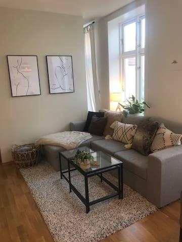 Hyggelig leilighet midt på Nygårdhøyden