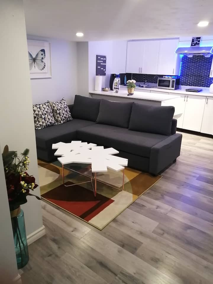 Luxury cosy appartment/bsmt