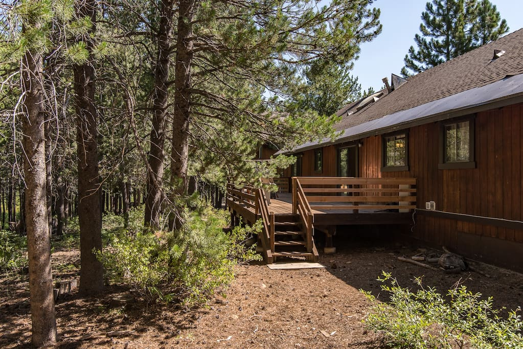 Enjoy the privacy provided by the towering pines that surround this cabin.