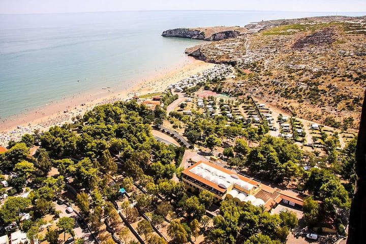 Cozy Bungalow Amidst Lush Greenery Steps To Beach
