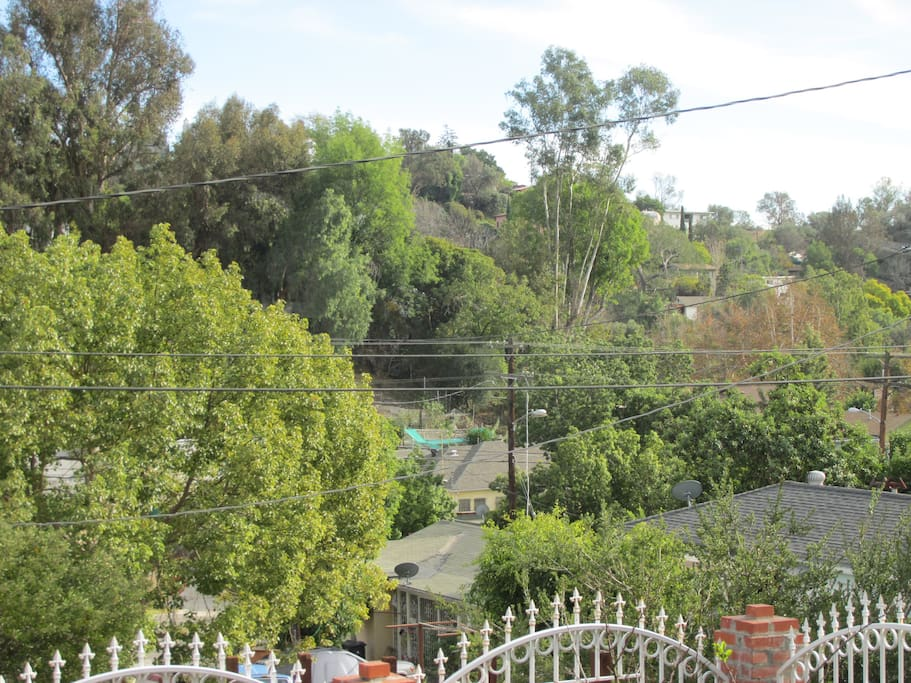 Gaze into the rolling hills of Elysian Heights and historic Echo Park, an LA neighborhood where everything intersects cool. Hear songbirds and take in the perfect day.