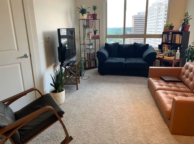 Clean apartment in convenient location in DC