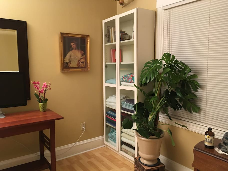 Living and bedroom. Antique Danish picture frame, thriving philodendron, cherry wood desk.