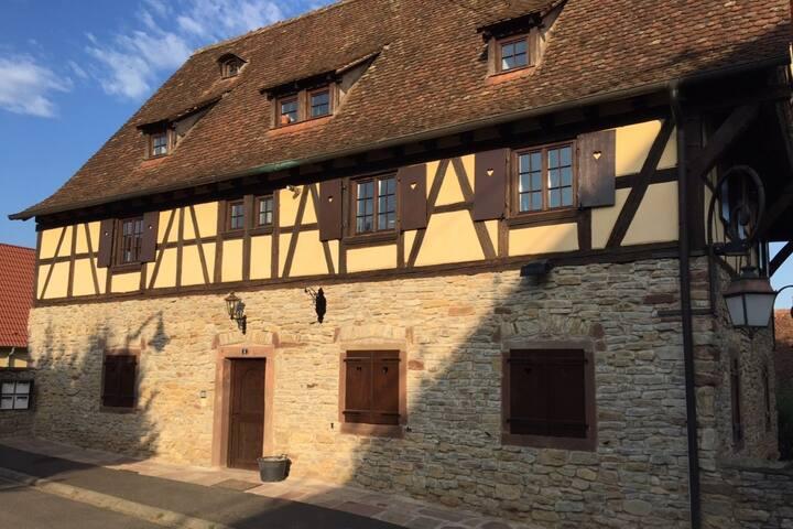 Gite de charme indépendant dans corps de ferme - Willgottheim - Apartmen