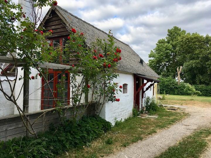 Hestestalden. Gårdidyl ved Stevns Klint.