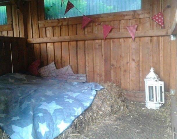 Stohlager für romantische Pferdefreunde