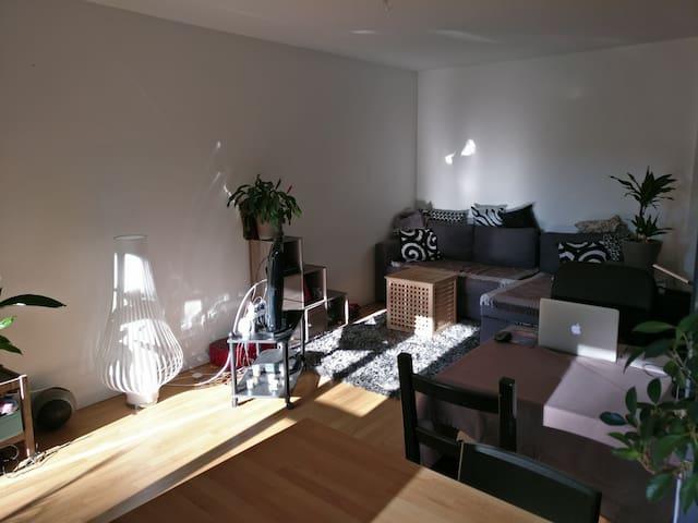 Bel appartement entier - idéal couple et famille - Lyon - Apartment