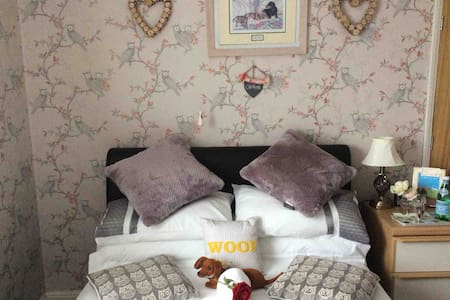 Cosy guest room in warm friendly house.