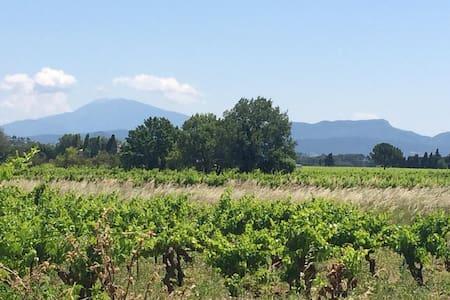 La petite maison dans les vignes - Sainte-Cécile-les-Vignes - บ้าน