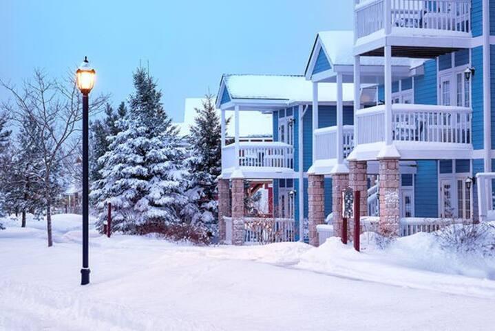 Winter Wonderland available for 1 amazing week! - Shanty Bay