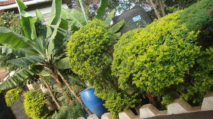 Welcome to Lake View Estate, Kenyatta Road, Juja.