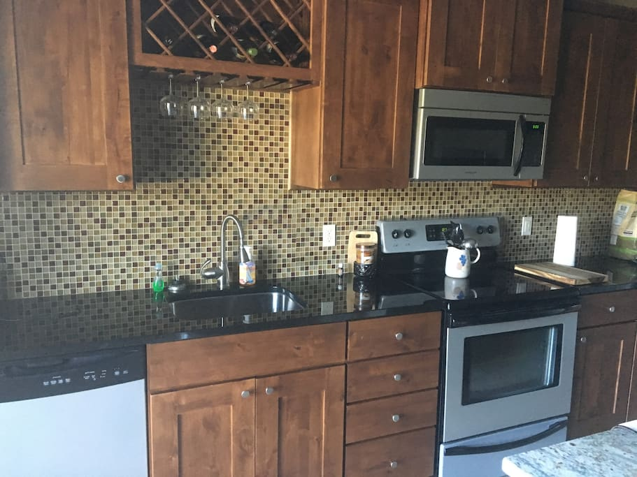 Basement kitchen...includes full size fridge and dishwasher.  Walks out to pool and patio