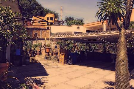 Hermosa casa en Fraccionamiento Privado Burgos - Трес-де-Майо - Дом