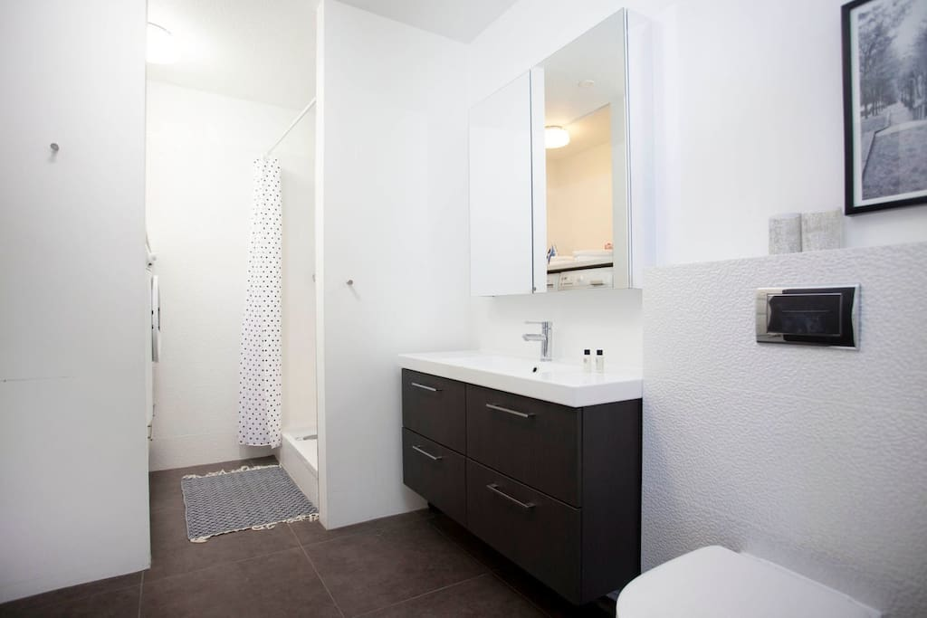 Bathroom in the larger apartment