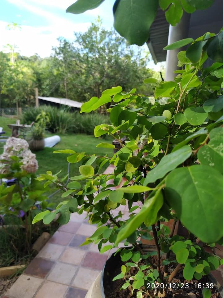 Recanto da Felicidade descanso, natureza e ar puro