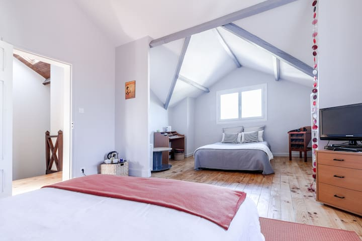 Charming quiet B&B Toulouse Minimes. - Toulouse - Bed & Breakfast