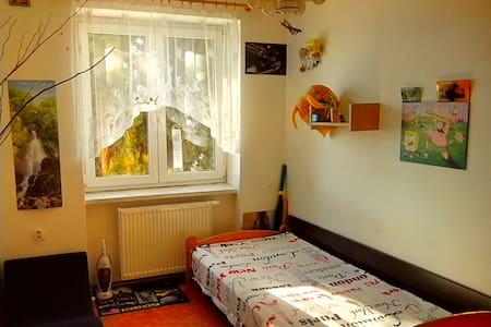Cosy Room for One Traveler - Karlovy Vary nearby - Chodov