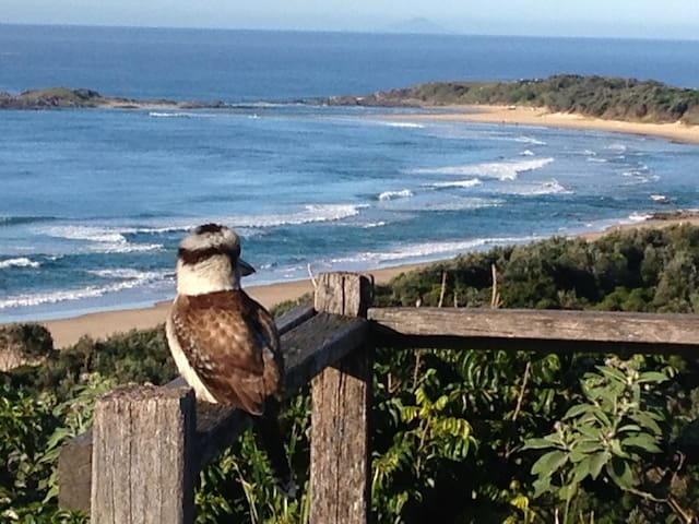Sawtell Beachside Holiday Villa - Sawtell - Villa
