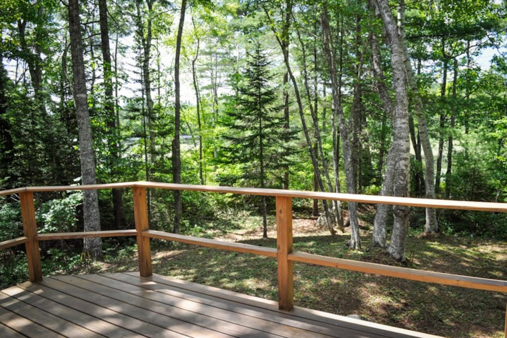 Path leads to the water, able to view water from the deck.